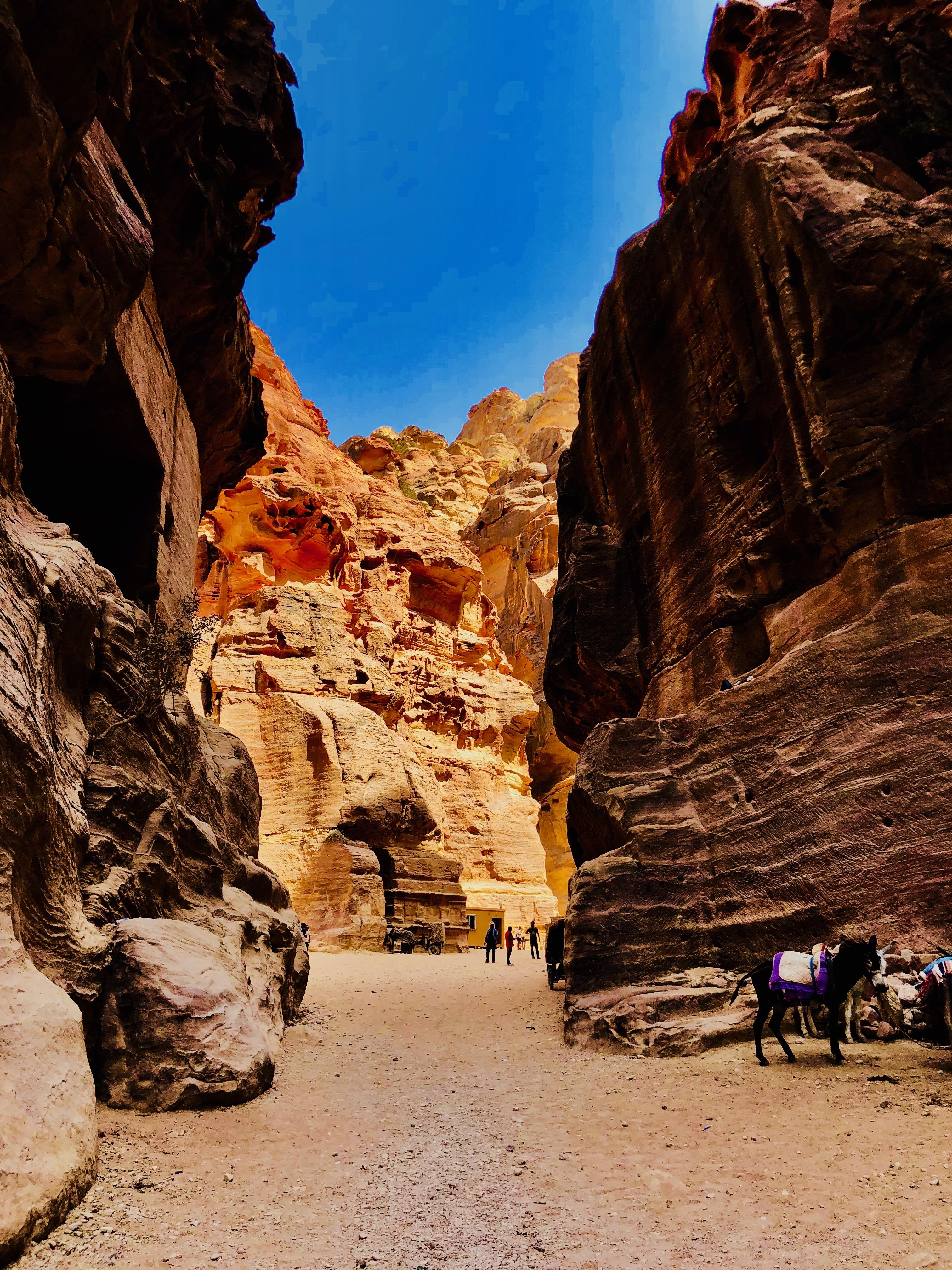 Petra & Wadi Rum, Jordan –Incredible!